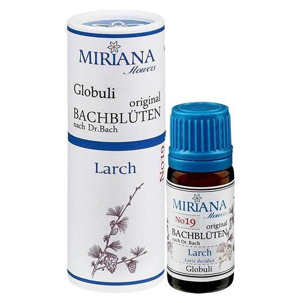 Larch Bachblüten Globuli (Lärche) 10g